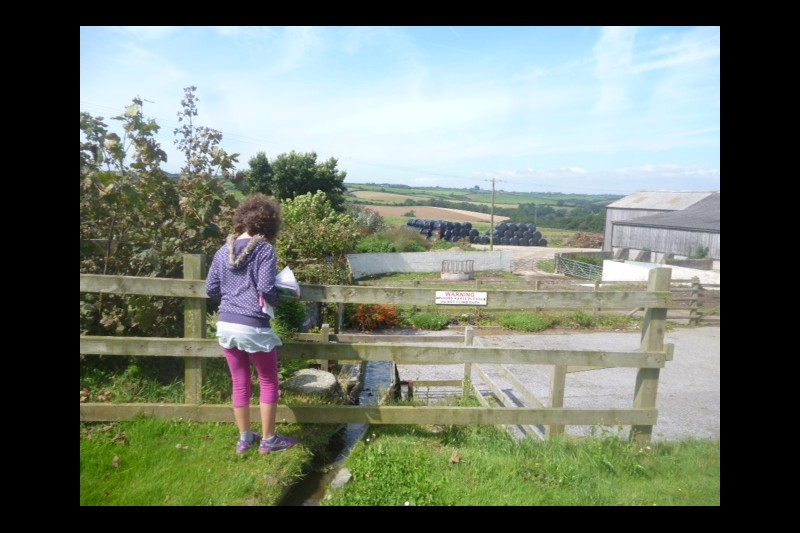 Imagen Secundaria de NovelEnglish English Language Course en Cornwall 12